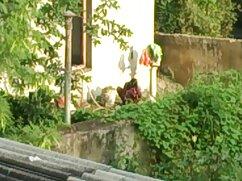 স্বামী ও স্ত্রী, চুদাচুদির ভিডিও গান